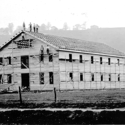 Apollo Woolen Mill
