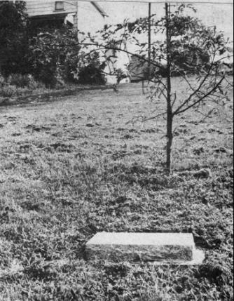 Bicentennial oak tree, planted on April 17, 1976, next to Drake Log Cabin.